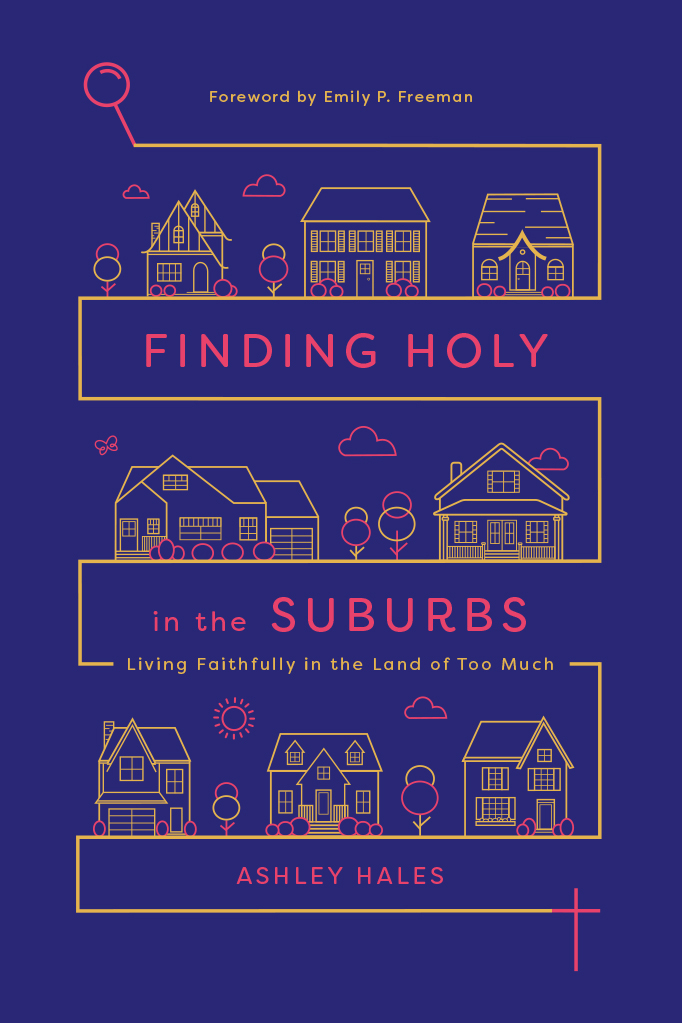 cover for Finding Holy in the Suburbs: Living Faithfully in the Land of Too Much
